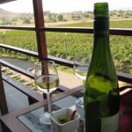 Sula Vineyards, India