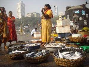 Fish auction at Sassoon Docks, Mumbai