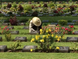 Kanchanaburi War Cemetery, the main Prisoner of War cemetery associated with victims of the Burma Railway.