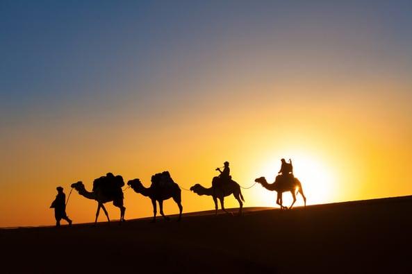 UAE Desert Safari