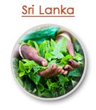 Sri_Lanka_Destination_Guide