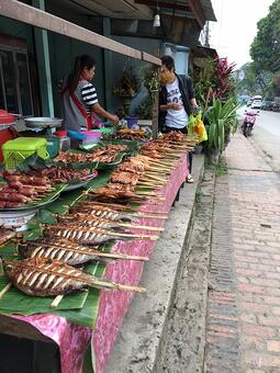A market in Luang Prabang, Laos. Photo courtesy of Sodha Traveler Michael H.