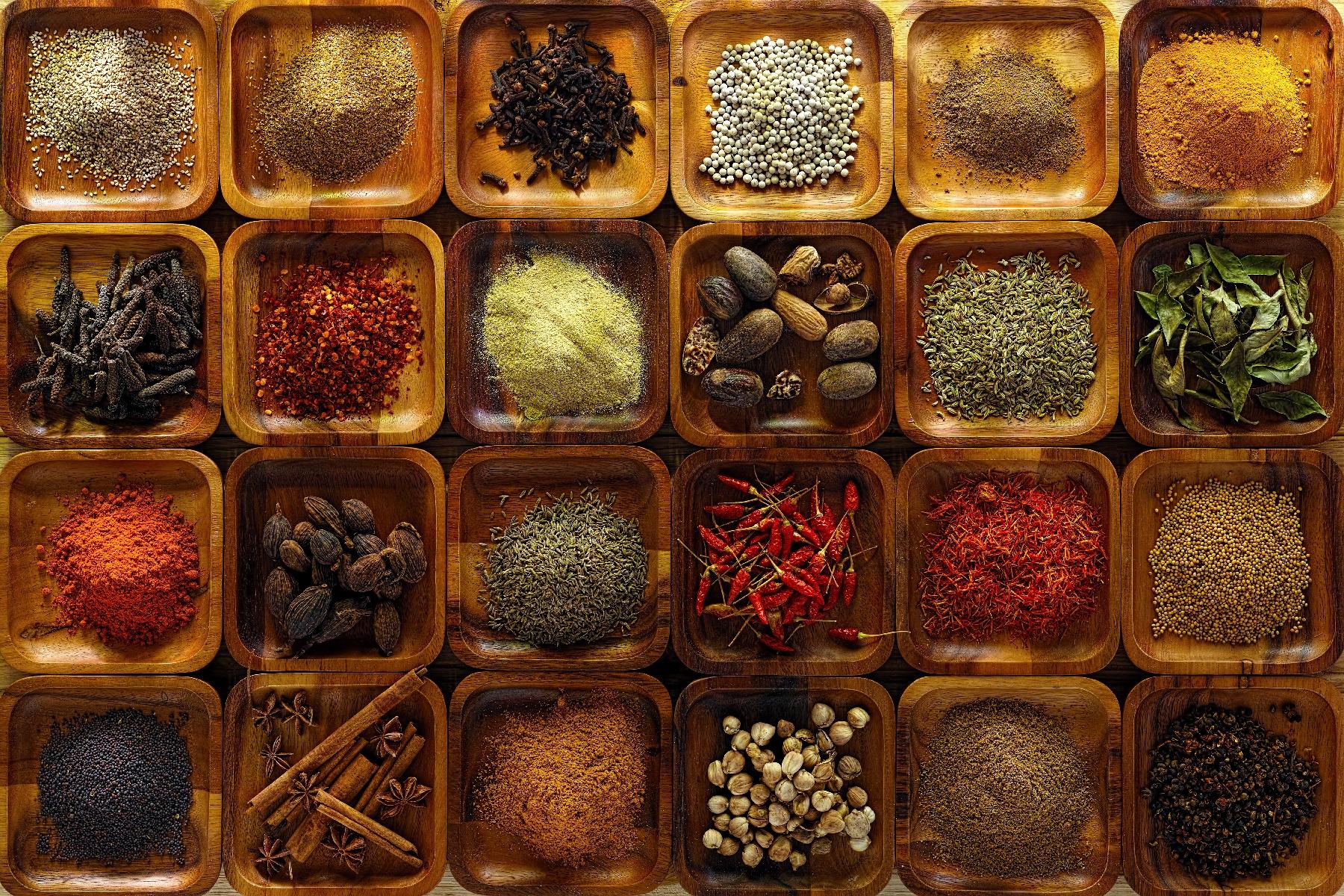 Taste of India-1