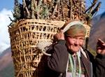 Nepal Locals