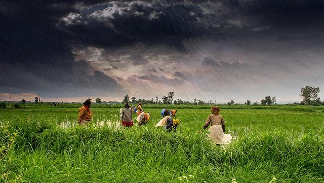 Monsoon in India. Photo courtesy of Rajarshi Mitra/Flickr.